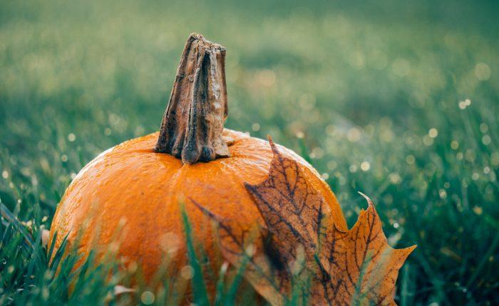 rudens meniu jūsų gražiai šypsenai