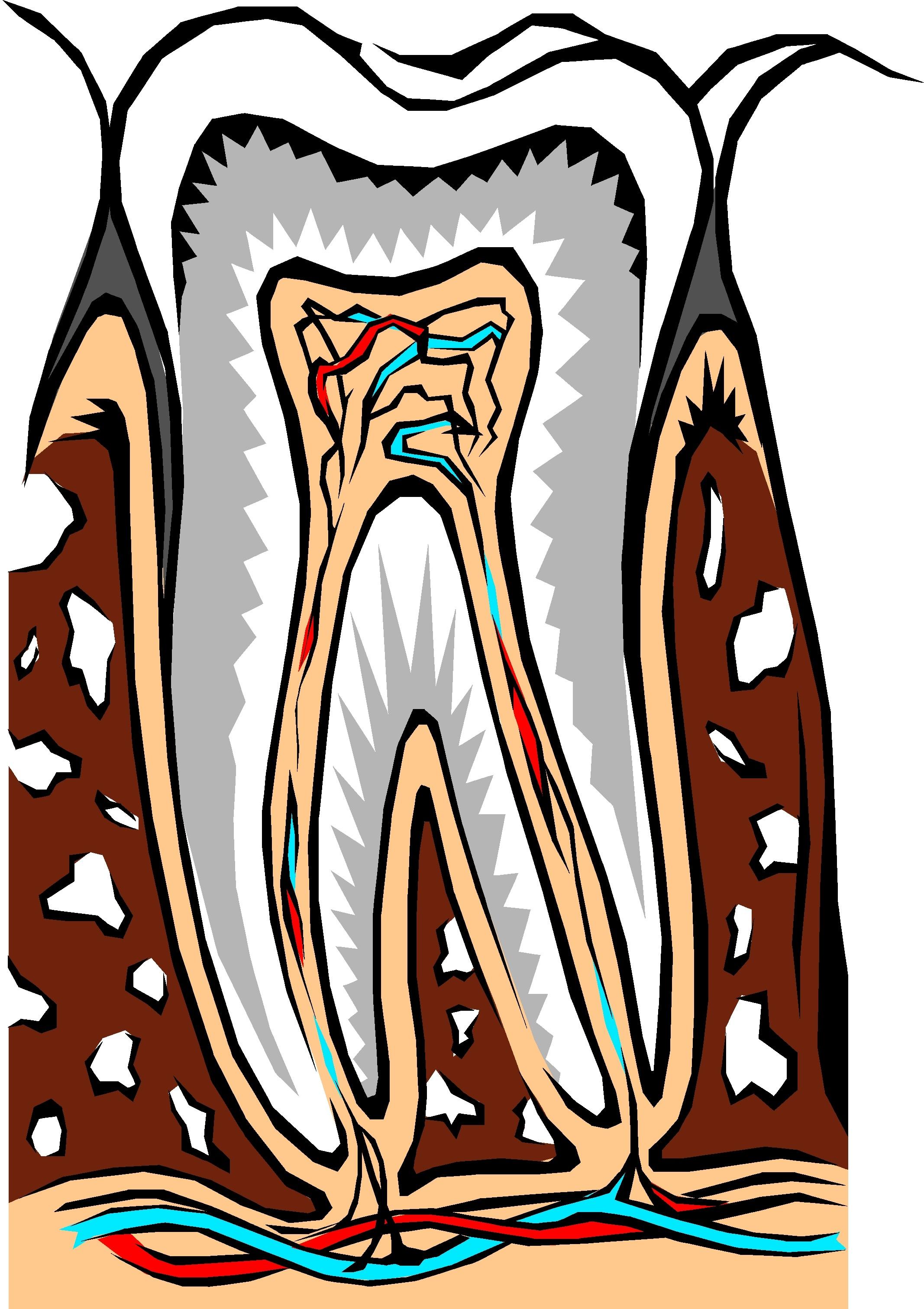 danties kanalai